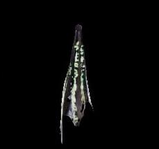 深淵の龍骸布・緑の画像