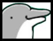 イルカ娘画像