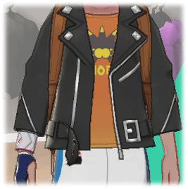 ポケモン 剣 盾 服