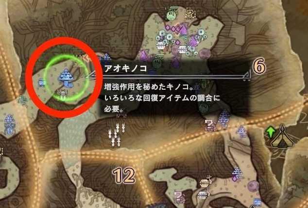 古代樹エリア6 アオキノコ