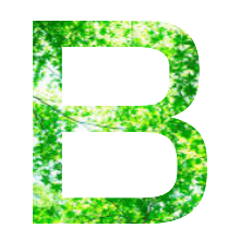 B評価の画像