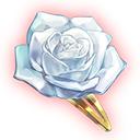 想いの白薔薇の画像