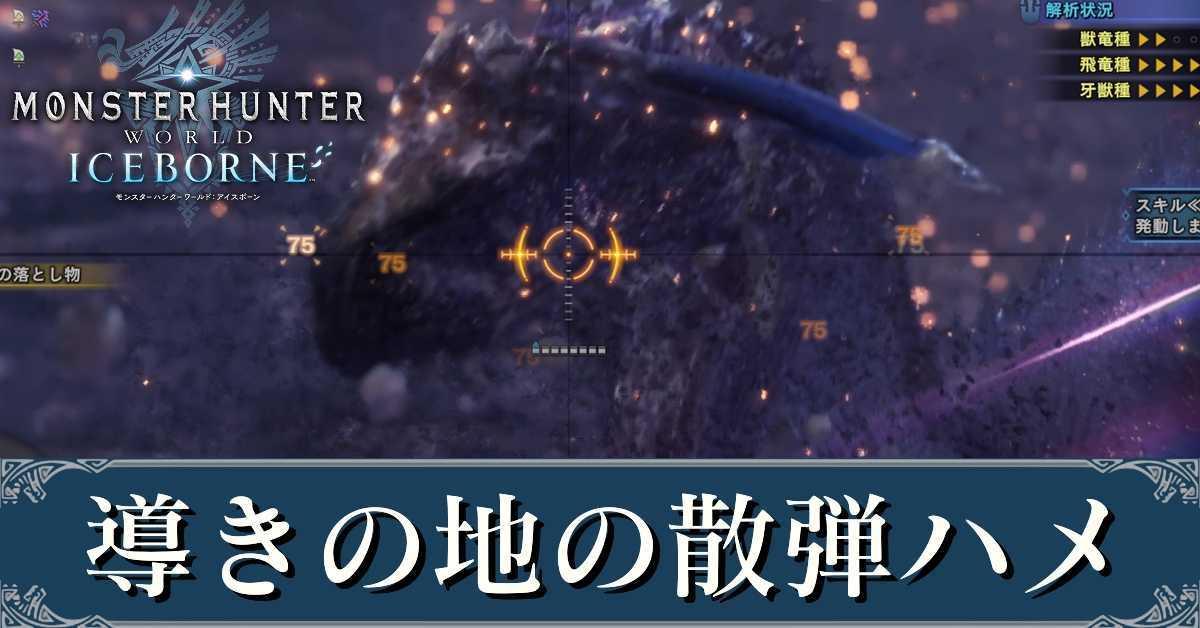 導きの地の散弾ハメ.jpg
