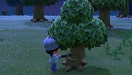 切り倒す あつ 森木 を あつ森攻略まとめブログ|あつまれどうぶつの森