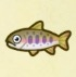 Cherry Salmon Icon