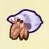 Hermit Crab Image