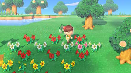 花の交配職人になる