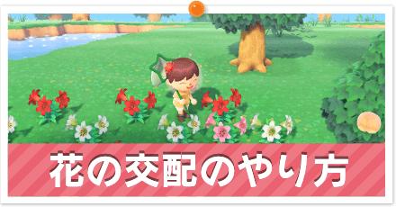 花の交配のやり方