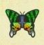 ニシキオオツバメガ画像