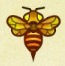 Wasp (Bee) Image