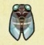 Giant Cicada Image