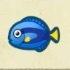 Surgeonfish Icon