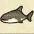 Whale Shark Icon