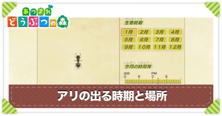 アリの値段と出る時間