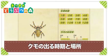 クモの値段と出る時間