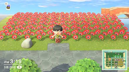 花を増やす