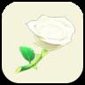 白いバラの画像