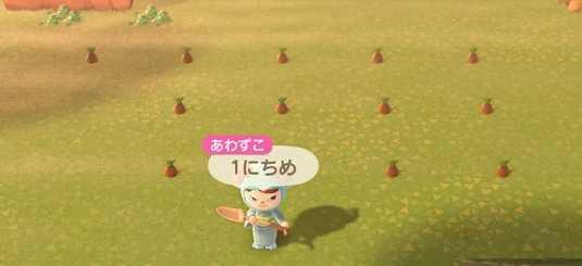 竹の植え方