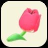 ピンクのチューリップの画像