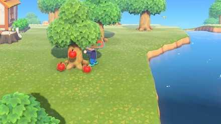 森 フルーツ 集め 方 あつ