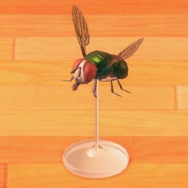 ハエの模型