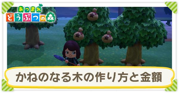 木 金 の あつ 森 なる