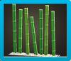 竹のスクリーン画像