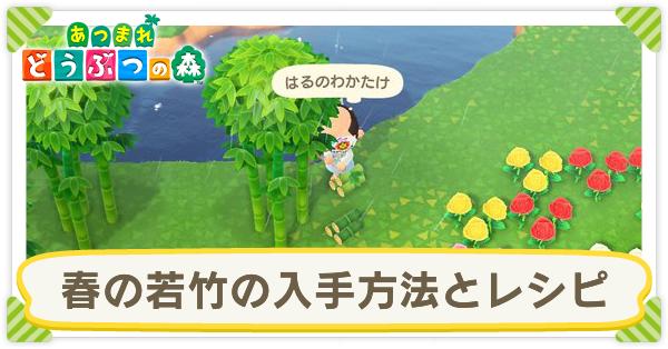 竹 植え 森 あつ 方 の