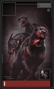ゾンビ犬×3
