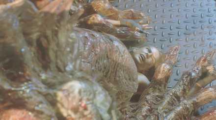 ネメシス第二形態イベントで死亡