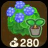 Blue Hydrangea Imae