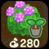 Pink Hydrangea Imae