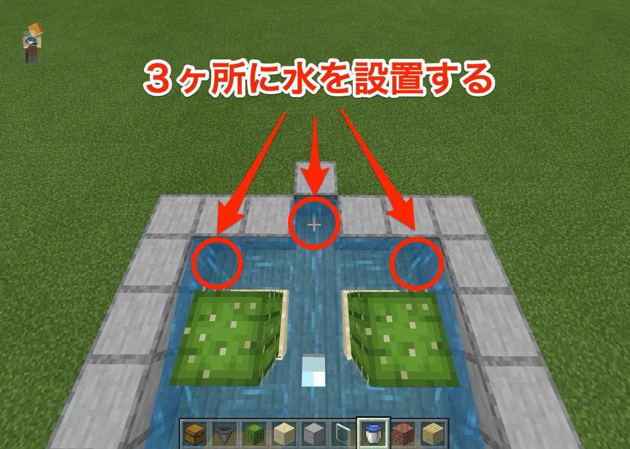 サボテン自動5.jpg