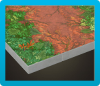 ジャングルのゆか画像