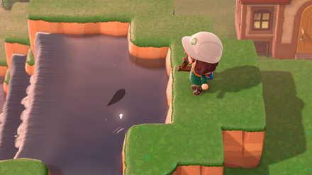 河川工事でも池で出現する魚が沸く