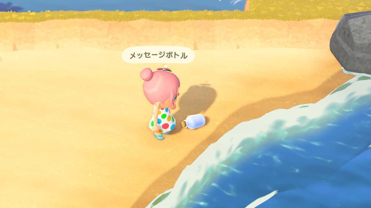 あつもり 夏の貝殻