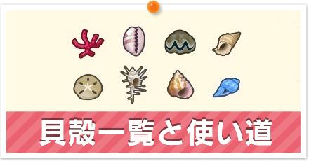 貝殻一覧.png