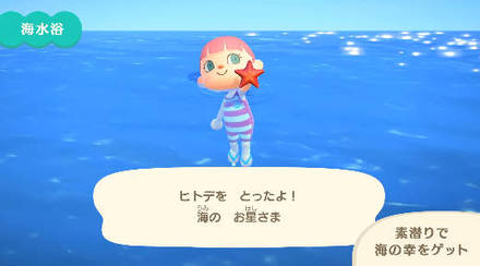 魚 あつまれどうぶつの森 7月