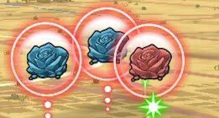砂漠の青バラ・赤バラ