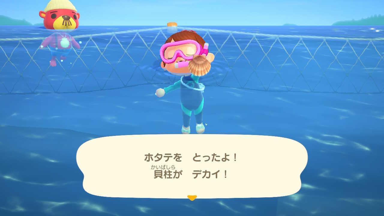海の中でホタテを採ると現れる