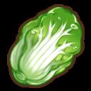 高級白菜の画像