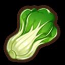 高級チンゲン菜の画像