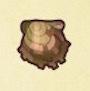 アコヤガイ画像