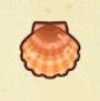 ホタテ画像