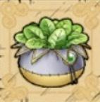 スタミナ草画像