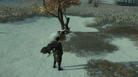 ゴーストオブツシマの狐の巣41