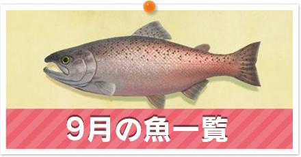 9月の魚一覧