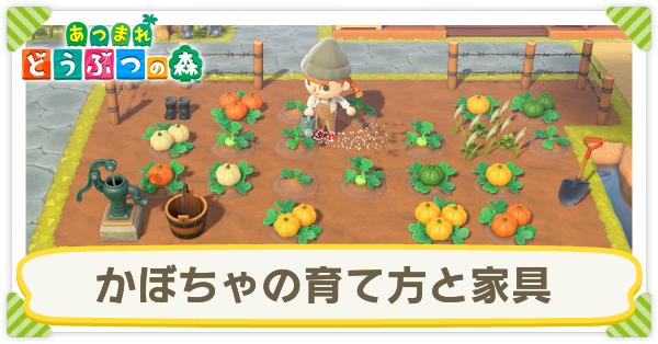 森 かぼちゃ あつ 【あつ森】かぼちゃの効率的な植え方とレシピ一覧