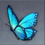 蝶々の羽画像