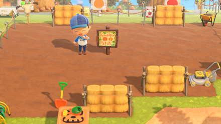 Pumpkin Patchの画像